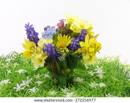 small spring garden flowers - stock photo