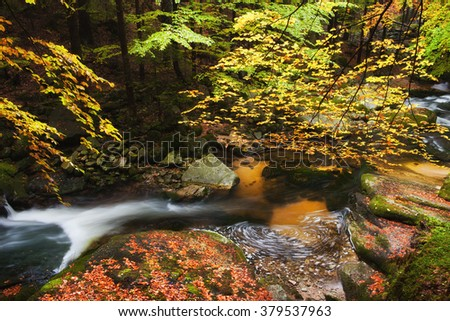 Small stream in tranquil scenery of autumn forest in the mountains - stock photo