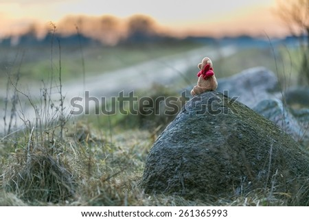 Small teddy bear sitting on stone in a rural landscape at sunset - stock photo