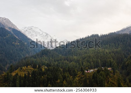 small traditional village in himalayan mountains covered with forest and snow - stock photo