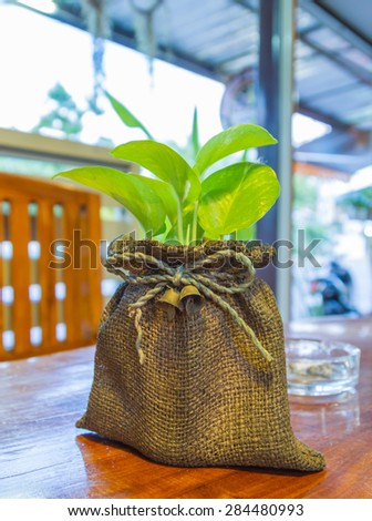 Small tree and flower on a wood table for decorate and design project. - stock photo