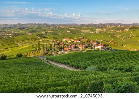 Small village among green vineyards at sunset in Piedmont, Northern Italy. - stock photo