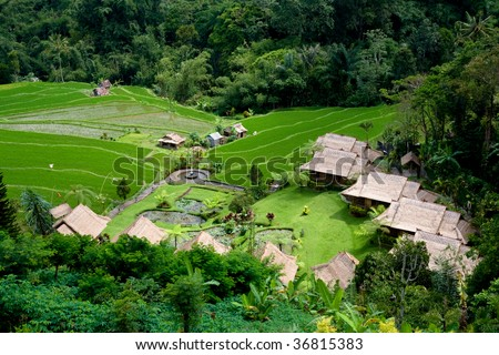 Small village in the rice field, Bali, Indonesia - stock photo