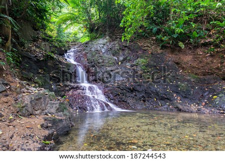 Small waterfall in a dense tropical rainforest near Capurgana, Colombia - stock photo