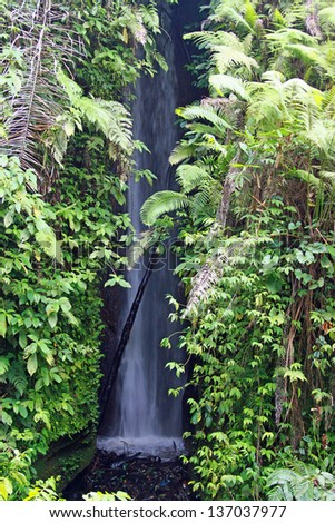 Small waterfall in tropics, Bali, Ubud, Indonesia - stock photo
