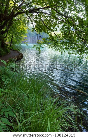 Small waterfalls and clean lake through tree twigs in Plitvice Lakes National Park (Croatia) - stock photo