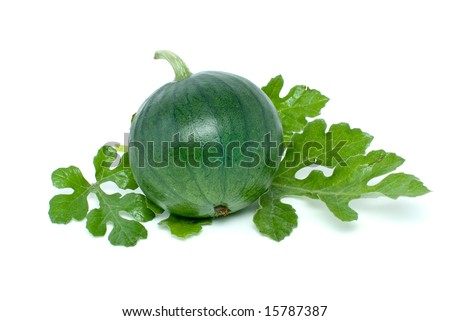 Small watermelon isolated on the white background - stock photo