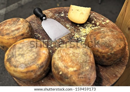Small wheels of pecorino and cheese knife on wooden table. - stock photo