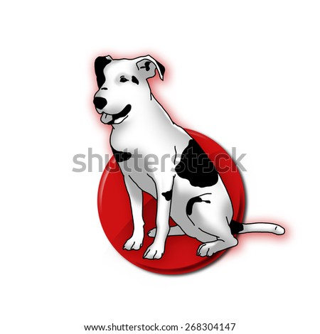 Smart black and white dog on red point. Man's best friend. - stock photo