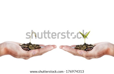 Smart Investment- Hand with dead seed and hand with growing seed over white background - stock photo