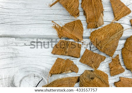 smashed a coconut into pieces of the above - stock photo