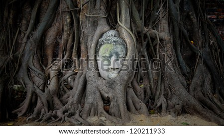 Smile Buddha head covered by tree root at wat Mahathat in Ayutthaya. Thailand - stock photo