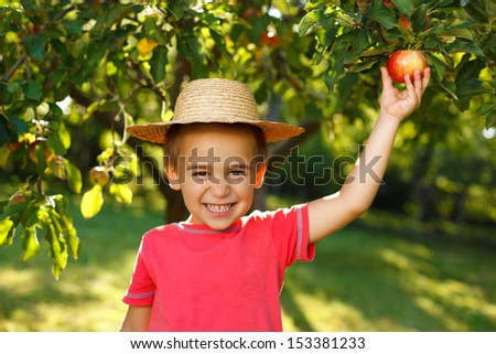 Smiling boy piking up an apple - stock photo