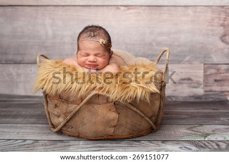 Smiling eight day old newborn baby girl. She is sleeping in a rustic basket on top of gold faux fur wearing a pearl and feather headband. - stock photo