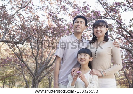 Smiling family looking up and admiring the cherry blossoms  - stock photo