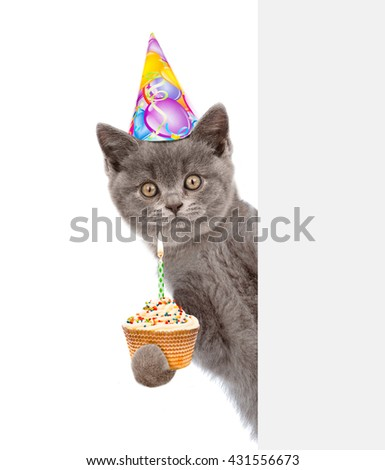 Smiling kitten with cake in birthday hat looking out because of the poster. isolated on white background - stock photo