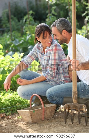 Smiling lovers doing gardening - stock photo