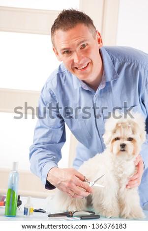 Smiling man grooming a dog purebreed maltese. - stock photo