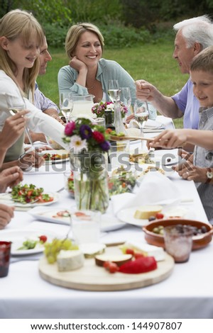 Smiling middle aged woman dining with family in garden - stock photo