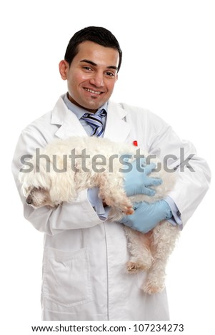 Smiling veterinarian carrying a pet dog in his arms.  White background. - stock photo