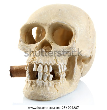 Smoking human scull with cigar in his mouth, isolated on white - stock photo