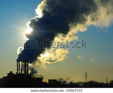 Smoking plant and sun - stock photo