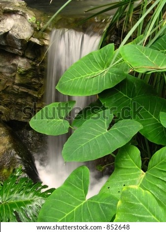 Smooth Waterfall and Leaves - stock photo