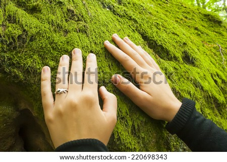 smoothing of moss on a rock - stock photo
