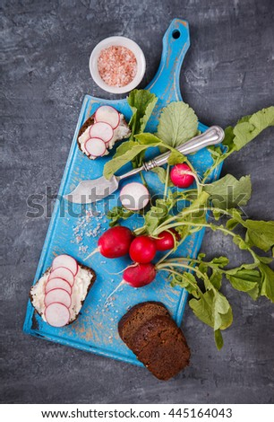 Snack,sandwiches with cheese and radishes on dark bread.Background on the blue Board.Healthy food or diet concept.top view.selective focus. - stock photo