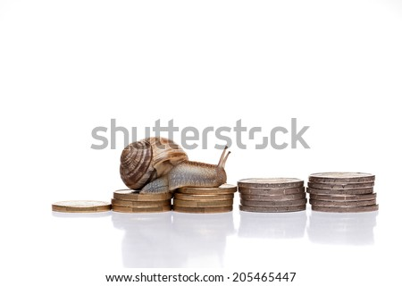 Snail on coins isolated on white - stock photo