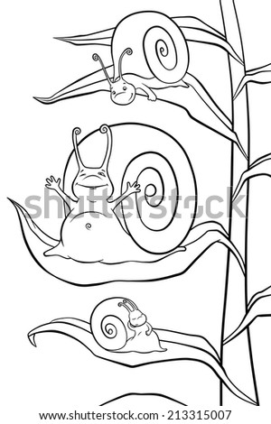 Snails in the morning - stock photo