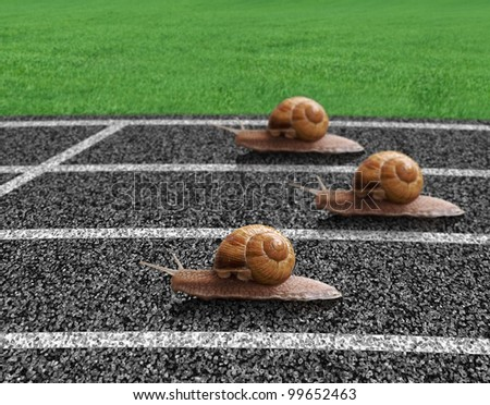 Snails race on sports track near the finish line - stock photo