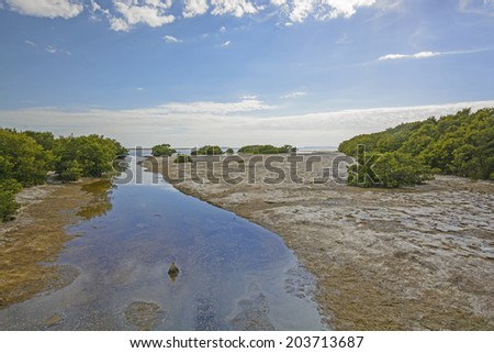 Snake Bight Creek entering into Florida Bay in the Everglades at Low Tide - stock photo