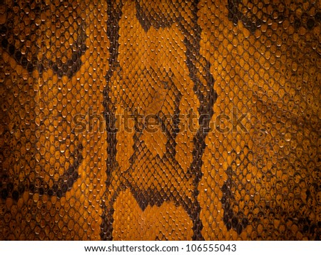 Snake leather background with vignette - stock photo