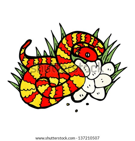 snake on nest of eggs - stock photo