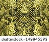Snake skin background - stock photo