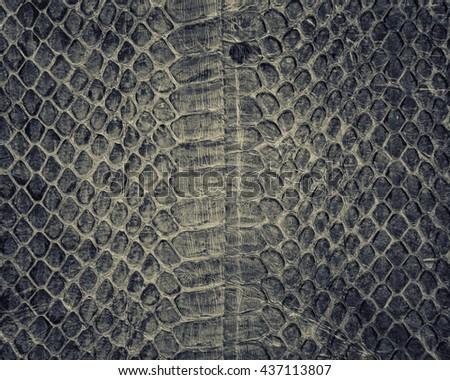 Snake skin background,Snake skin leather texture. - stock photo