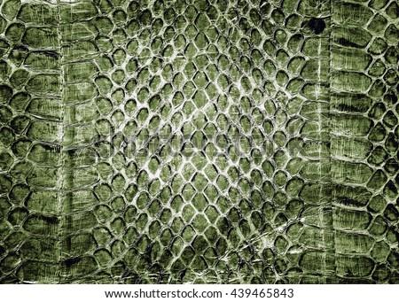 Snake skin background,Snake skin leather texture - vintage effect style. - stock photo