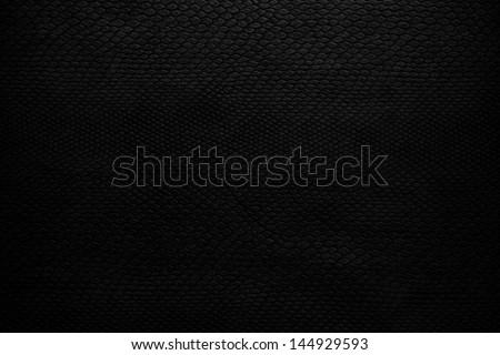 snake skin black - stock photo
