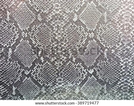 Snake skin black and white - stock photo