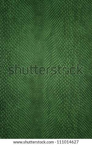 snake skin green - stock photo