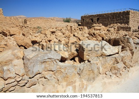 snake street masada ancient Jewish city Negev desert archeology - stock photo