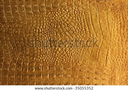 snakeskin or crocodile texture for background - stock photo