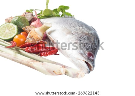 Snapper and spices isolate on white - stock photo