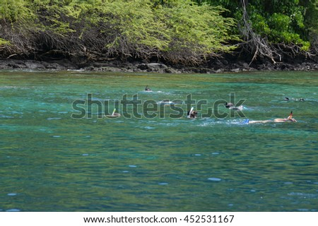 snorkelers in the crystal clear waters of Kealakekua Bay at Captain Cook Monument on Big Island, Hawaii - stock photo