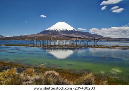Snow capped Parinacota Volcano reflected in Lake Chungara, Chile - stock photo
