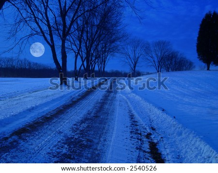 Snow coverd rural lane at night in moon light. - stock photo