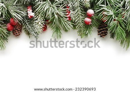 Snow covered Christmas tree branches background - stock photo