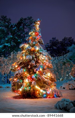Snow covered Christmas tree with colorful lights - stock photo
