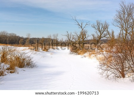 Snow Covered Creek in Moraine Hills State Park in Illinois - stock photo
